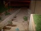 Três crianças são baleadas no Bairro Eldorado, em Montes Claros