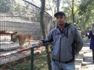Marcelo foi um dos primeiros a visitar o Tigre Hu na terça-feira (Foto: Franciele John/ G1)