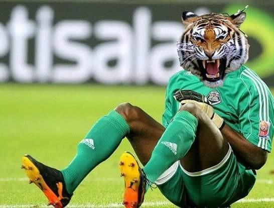 Inter Tigres Libertadores Beira-Rio corneta (Foto: Reprodução/Twitter)