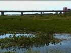 Baronesas tomam às margens do Rio São Francisco em Petrolina, PE