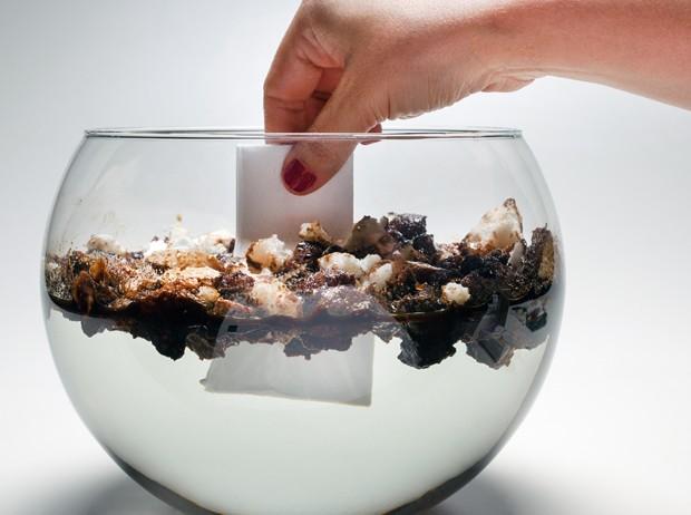 Substância que absorve óleo da água é lançada por Marko Brajovic (Foto: Divulgação)