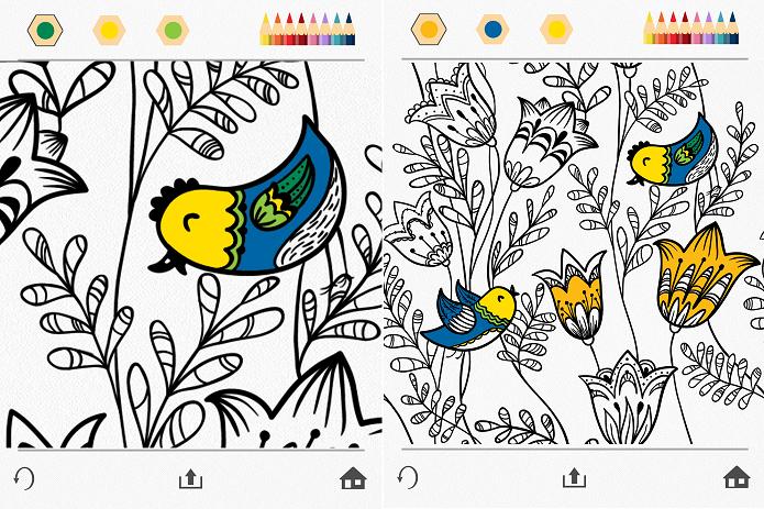 Colorindo o desenho floral (Foto: Felipe Alencar/TechTudo)