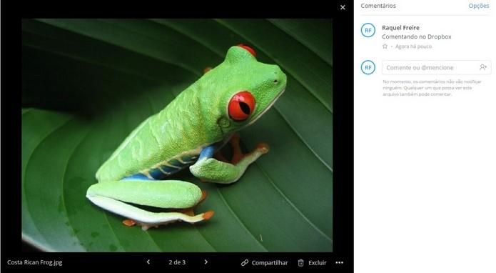 Dropbox libera recurso de comentários para todos usuários (Foto: Reprodução/Raquel Freire)