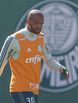 BLOG: Felipe Melo no Palmeiras: o último ato