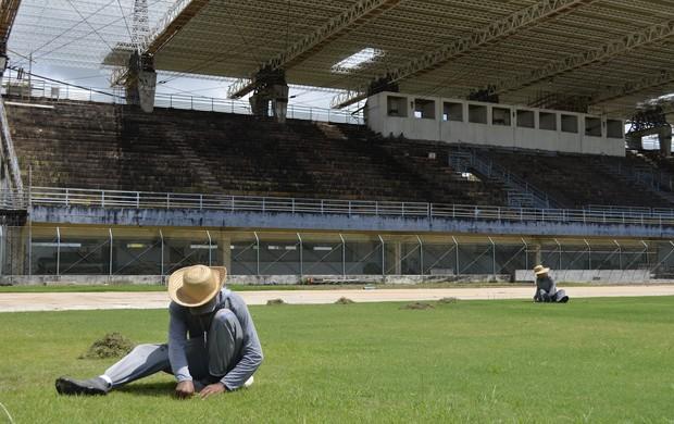 Obras do 'Zerão' finalizam cobertura de arquibancada e troca de gramado (Foto: Cassio Albuquerque/GE-AP)