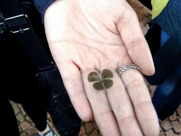 Trevo da sorte (Foto: Carol Malandrino/G1)