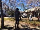 Final de semana gelado movimenta o setor turístico da Serra catarinense