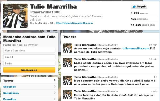 Twitter Tulio Maravilha (Foto: Reprodução / Twitter)