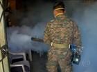 Países se armam para combater a explosão de casos do vírus da zika