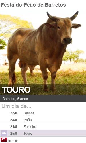 Touro Baleado (Foto: Arte/G1)