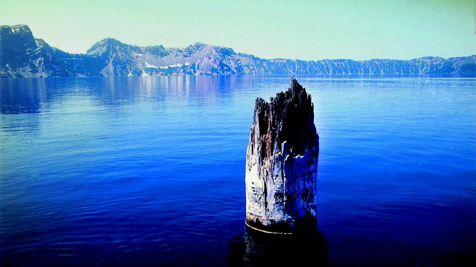 Este pedaço de madeira flutua em um lago há 120 anos — e ninguém sabe como