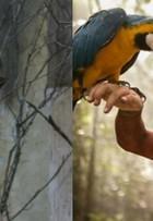 Giullia Buscacio faz crossfit para viver índia na TV: 'Cena só de tanguinha'