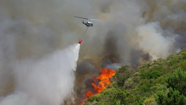 incendio-africa-sul-bombeiro (Foto: Divulgação/Working on fire)