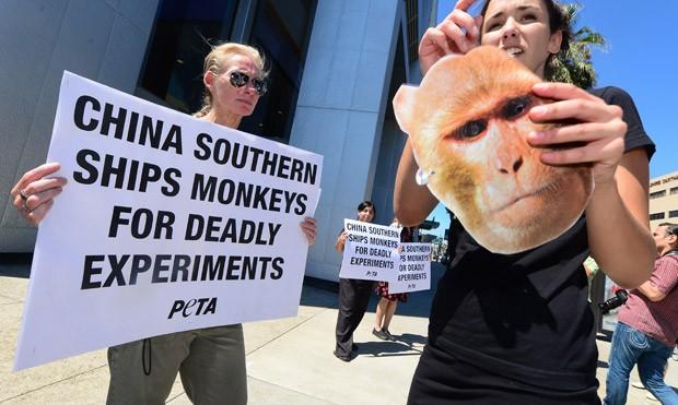 Peta alega que companhia aérea é conivente com testes com animais, ao transportá-los. (Foto: AFP Photo/Frederic J. Brown)