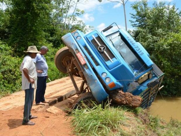 Um dos animais morreu com a queda do caminhão (Foto: Anari Notícia/Reprodução)