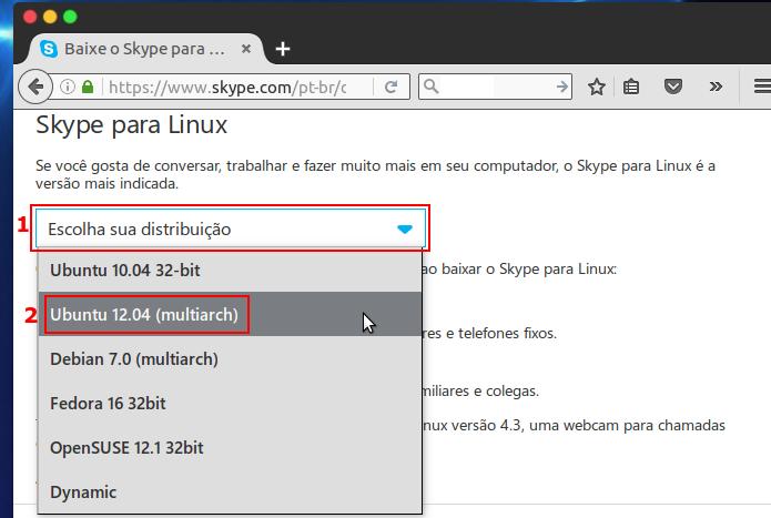 Selecionando o pacote de instalação do Skype a ser baixado  (Foto: Reprodução/Edivaldo Brito) (Foto: Selecionando o pacote de instalação do Skype a ser baixado  (Foto: Reprodução/Edivaldo Brito))