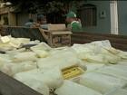Mais de 4 toneladas de queijo são apreendidas em fábricas clandestinas