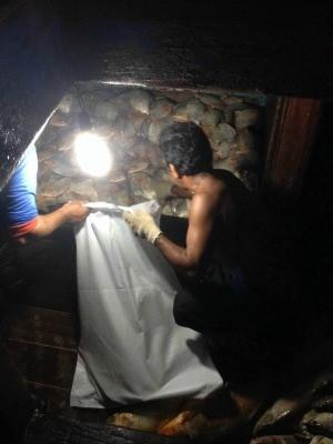 Pescado ilegal apreendido em Manaus (Foto: Divulgação/Batalhão Ambiental)