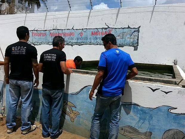O excedente deve ser usado na merenda escolar (Foto: Gil Carvalho/Secretaria de Administração Penitenciária)
