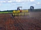 Mato Grosso aguarda chuva para plantar maior safra de soja do país