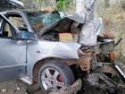 Jovem de 23 anos morre após dormir no volante e bater em árvore, diz PRF
