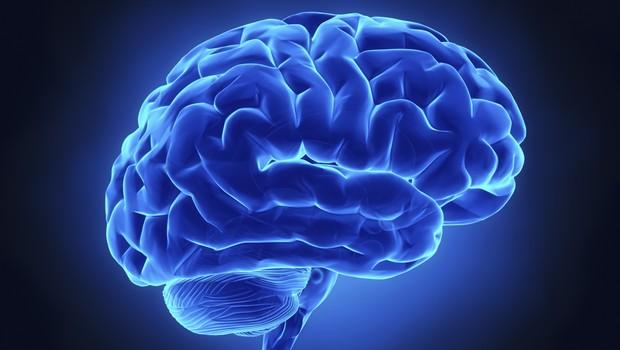 cérebro; mente; pensamento (Foto: Thinkstock)