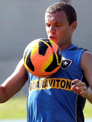 Marcelo Mattos treino Botafogo (Foto: Cezar Loureiro / Agência O Globo)