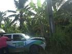 Menina de 5 anos morre atropelada por carro na AL-105, em Jacuípe