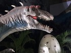 Exposição no Recife reúne réplicas de dinossauros com até 5 metros