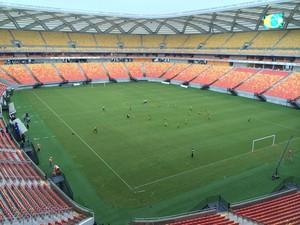arena da amazônia véspera Resende x Vasco (Foto: Fabrício Marques)