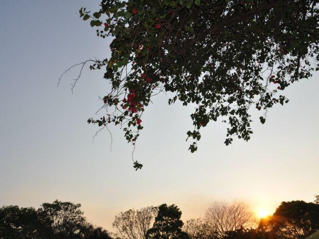 Céu limpo nesta tarde quente em Campo Grande de quinta-feira (Foto: Isabela Cavalcante/ G1 MS)