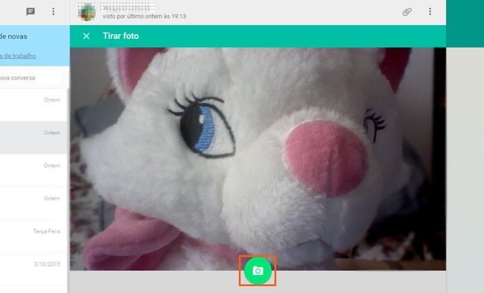 Posicione a webcam e registre a foto no botão verde (Foto: Reprodução/Barbara Mannara)