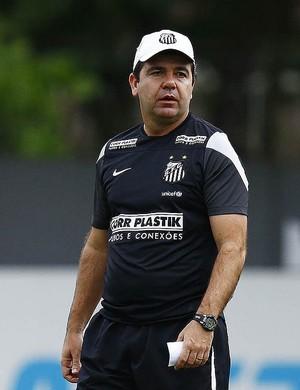 Enderson Moreira técnico do Santos (Foto: Ricardo Saibun/ Santos FC)