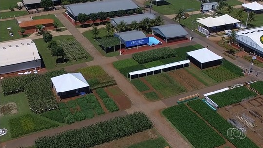 Pesquisador integra produção de soja com pecuária em Rio Verde, GO
