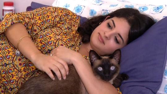 'Rio Sul Revista' deste sábado (20) conheceu pessoas apaixonadas por gatos