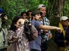 Festival de aves de Paraty reúne observadores de pássaros no RJ