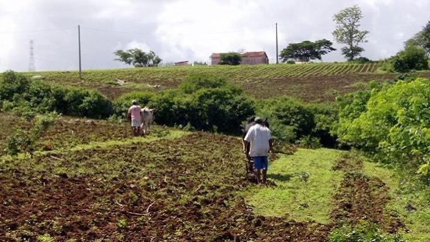 Agroecologia alia preocupação ambiental com questões sociais (Divulgação/ AS-PTA Agricultura Familiar e Agroecologia)