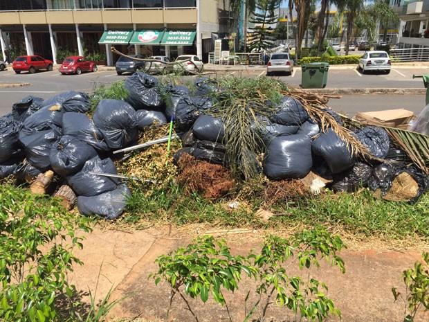 Lixo acumulado há cerca de um mês em frente a quadra 300 do Sudoeste (Foto: Lucia Souto/VC no G1)