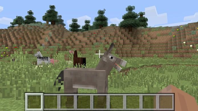 Para obter uma mula será necessário domesticar um cavalo e um burro em Minecraft (Foto: Reprodução/Rafael Monteiro)