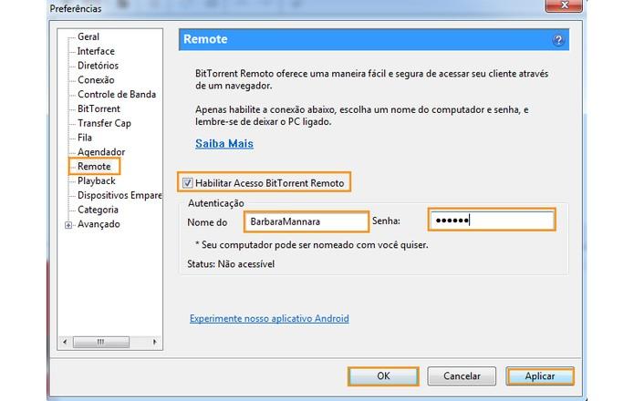 Habilite o acesso remoto e cadastre sua senha de acesso (Foto: Reprodução/Barbara Mannara)