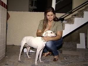 Após abandono, Leleco já tem novo lar (Foto: Reprodução/TV Gazeta)