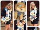 Karina Bacchi carrega cadelinha de estimação como 'bolsa'