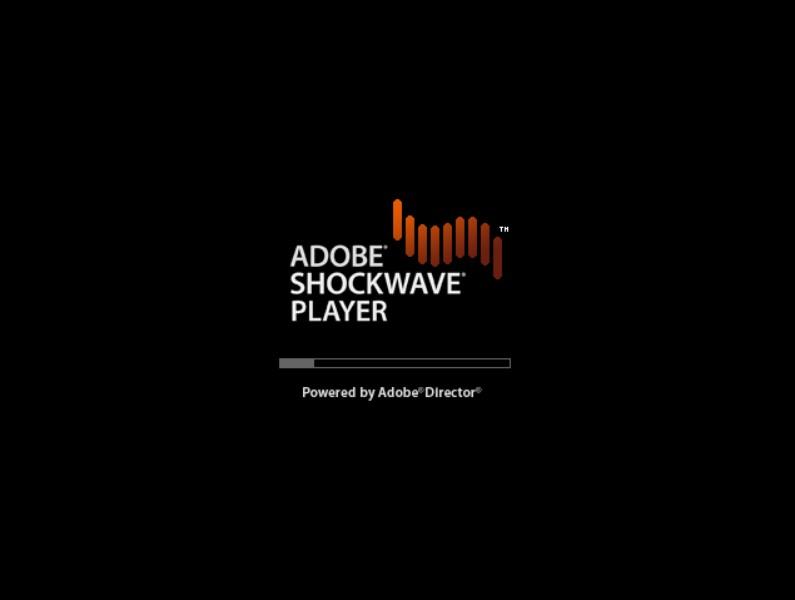 Shockwave Flash Download Chip