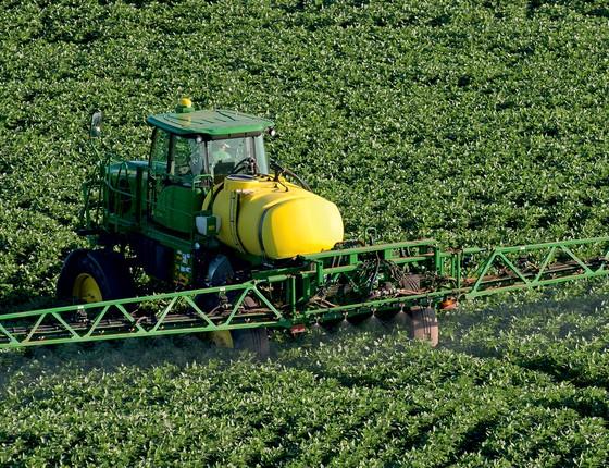 ESPERANÇA Plantação de soja em Cascavel, no Paraná. Um bom desempenho  do agronegócio tornará 2015  apenas menos ruim  (Foto: Delfim Martins/Pulsar )