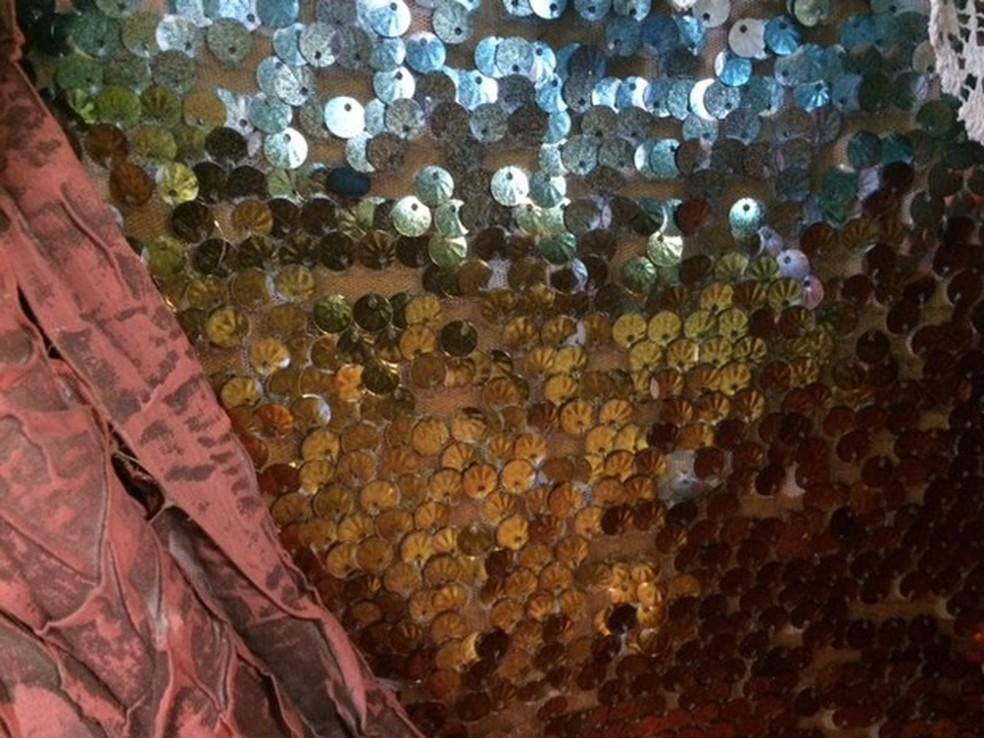 Com a crise, carnavalescos têm dificuldade de encontrar materiais importados, como tecido paetê (Foto: Alba Valéria Mendonça/ G1)