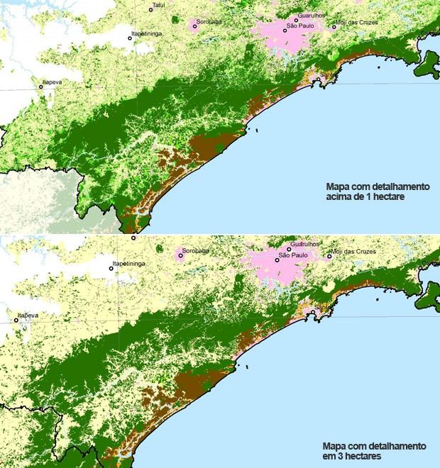 Ampliação mostra as diferenças do desmatamento (Foto: Divulgação/SOS Mata Atlântica)