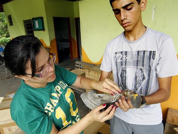 Funcionários de empresa resgataram o animal (Foto: Divulgação/Semcom)