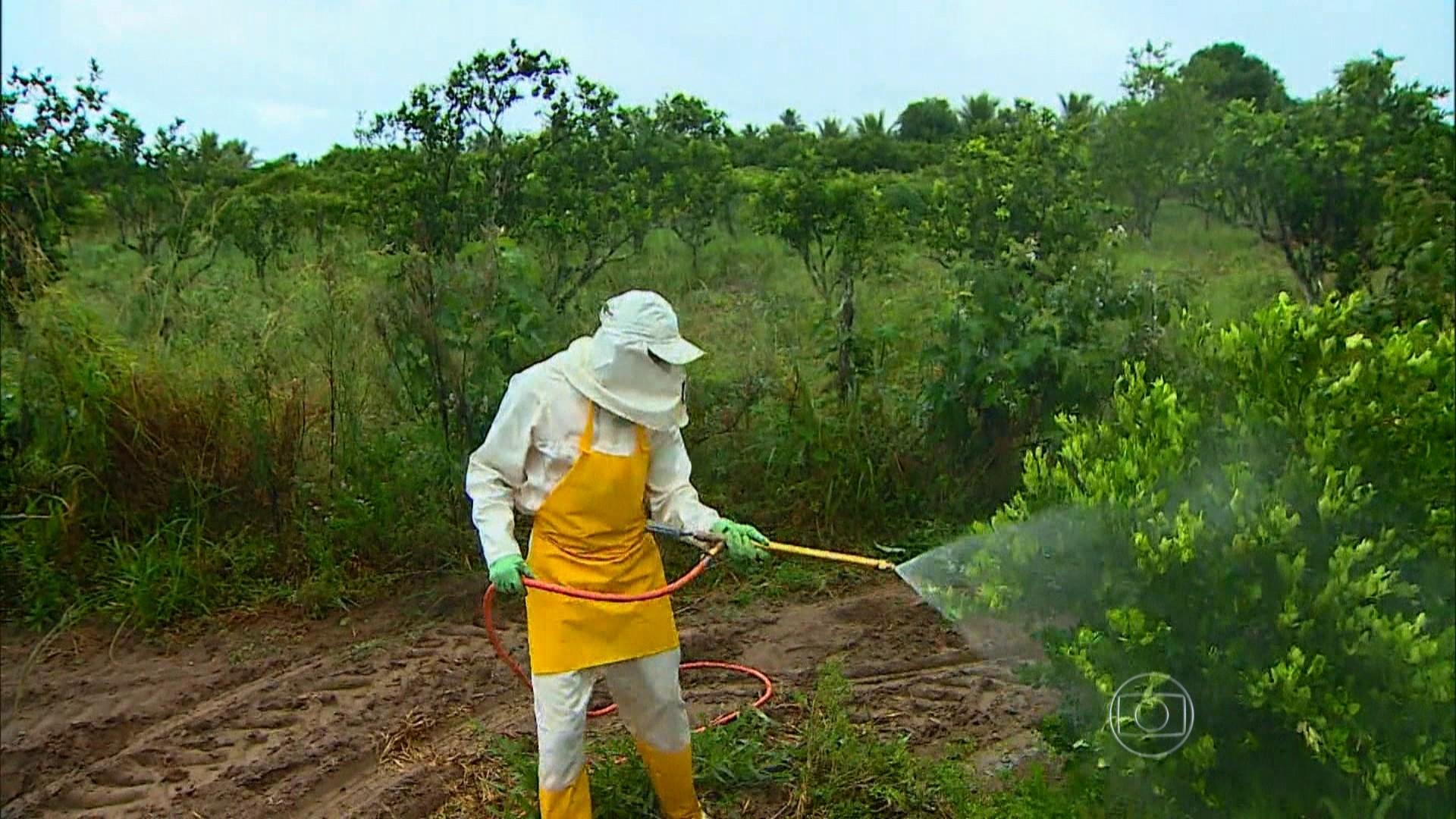 Inca e Fiocruz defendem o fim gradativo dos agrotóxicos