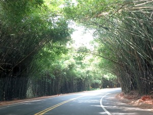 Estrada de Morungaba (SP) (Foto: Matheus Filippi / G1 Campinas)