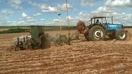 Começa plantio do milho safrinha na região sudoeste de Goiás